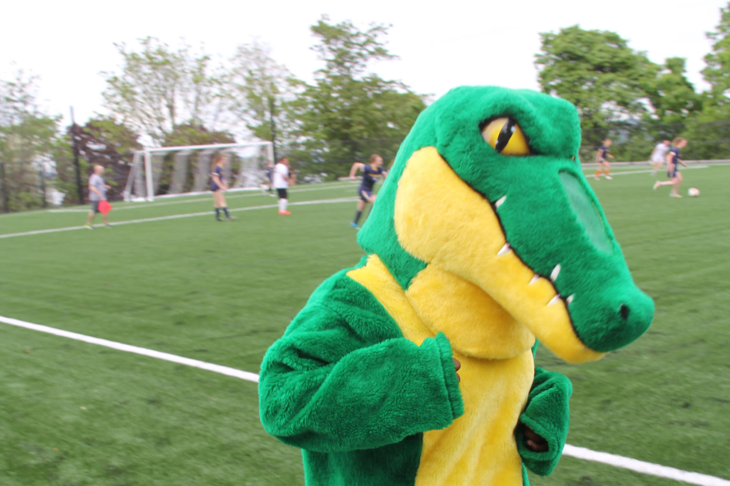 %22Chomp%2C%22+the+Annie+Wright+Schools+gator+mascot%2C+celebrated+the+opening+of+the+field+yesterday+with+a+faculty+and+students.