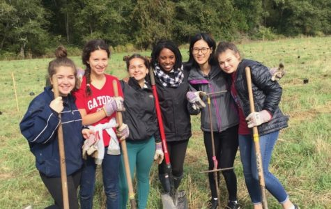 Community Service Leadership activity jumps into action