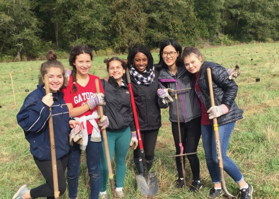 The+Community+Service+Leadership+activity+planted+nearly+800+trees+along+South+Prairie+Creek+to+provide+a+cooler+climate+for+the+passing+salmon.+The+group+has+also+organized%2C+planned%2C+and+participated+in+other+community+events+this+year.