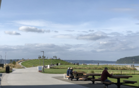 The new dunes in Tacoma