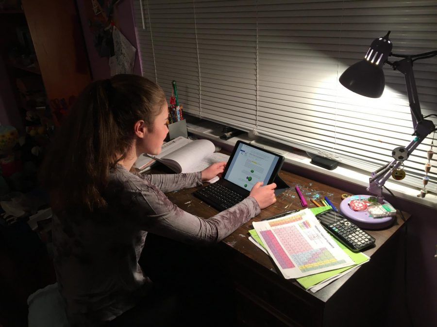 Bellarmine student Emily Smith uses the platforms Moodle and Zoom for her online learning weekly from home.