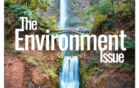 The Environment Issue